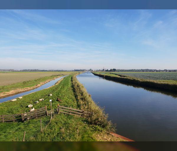 """Oeververvanging Niedorpervaart: """"Werken aan het vergroenen van waterveiligheid"""""""